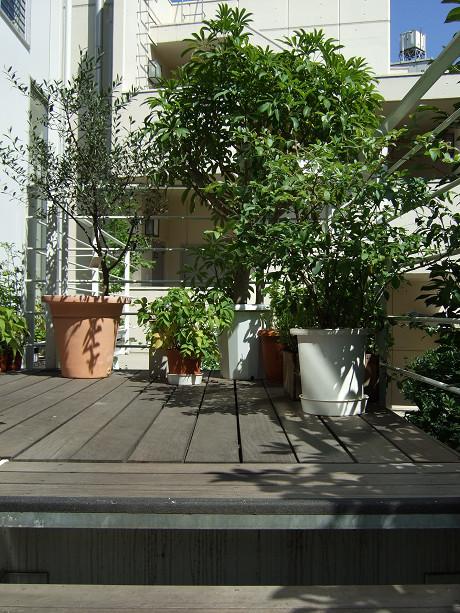 kurkku | クルック design、green、libraryへの階段をのぼったところ