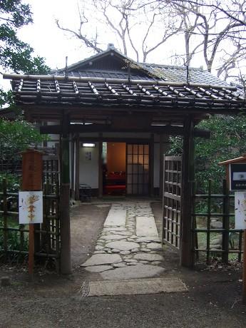 六義園 しだれ桜と大名庭園のライトアップ 駒込・千石・巣鴨5_s