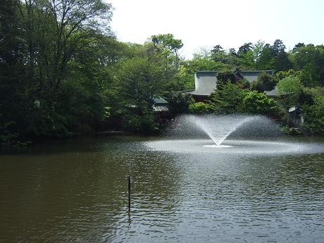 井の頭公園 新緑と噴水_2
