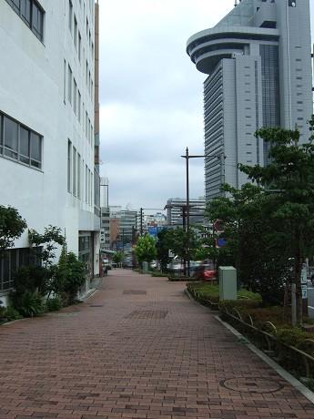 播磨坂さくら並木と旧富坂・旧竹早町 文京区_1