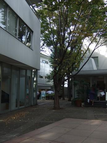 Little Notting Hill @ Daikanyama リトルノッティングヒル@代官山&Cath Kidston Cafe キャス・キッドソン カフェ_26