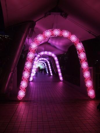 5th ANNIVERSARY Tokyo Dome City Winter Illumination 0| 東京ドームシティ ウィンターイルミネーション 0|(ゼロイチ)&Tokyo Dome Hotel 東京ドームホテル_3