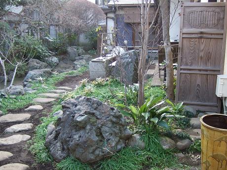 夏椿(なつつばき) 世田谷 上町_3