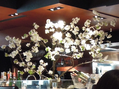 表参道の洋食レストラン 洋食MIYASHITA Omotesando Hills 表参道ヒルズ 神宮前 表参道・明治神宮前・原宿_20