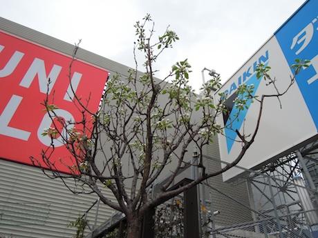 Odakyu Shinjuku 小田急百貨店 新宿店 屋上広場 新宿_4