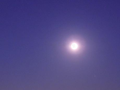 月の光に♩