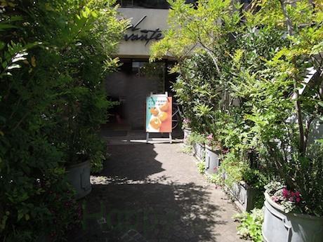 イタリア菓子専門店 Sol Levante  ソルレヴァンテ 表参道